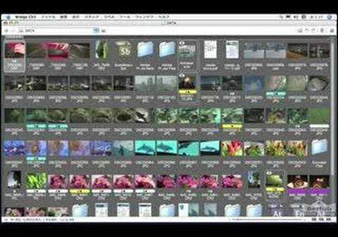無料でAdobe CS2が手に入る!?Photoshop CS2のダウンロード方法 フォトショップの参考書 ...